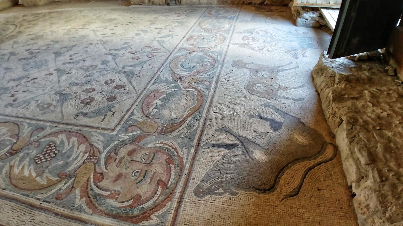 Jordanie - Mosaiques dans l'église des apôtres à Madaba