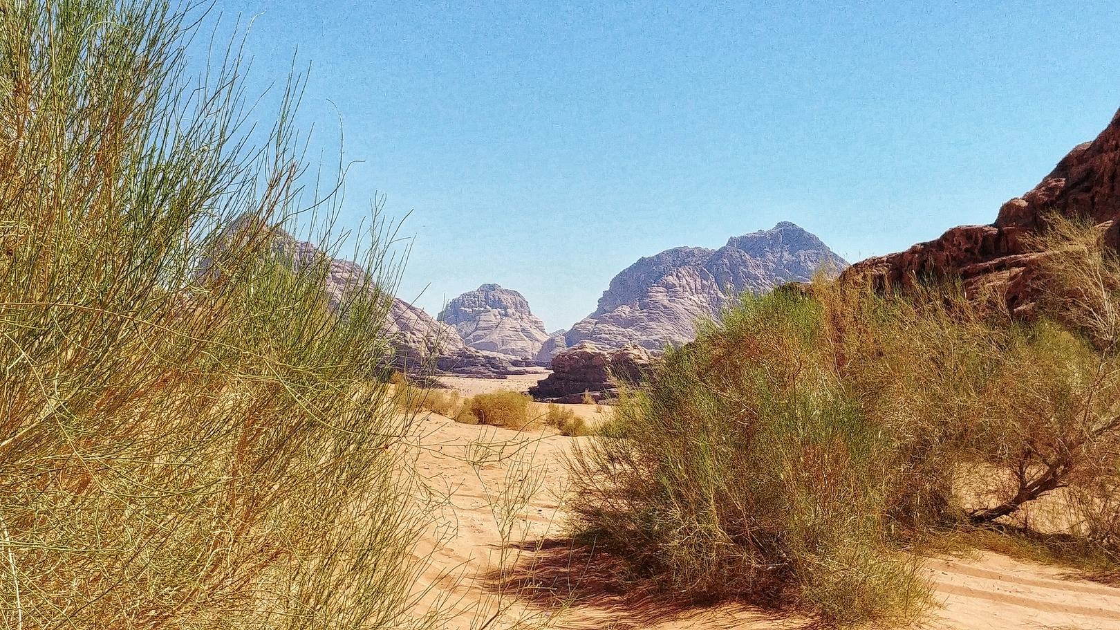 Jordanie - Désert de Wadi Rum