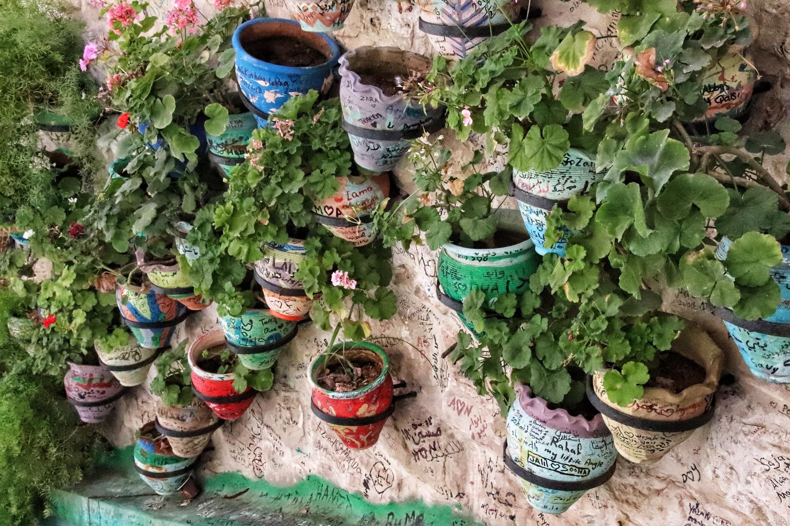 Jordanie - Pots de fleurs décorés dans une ruelle d'Amman