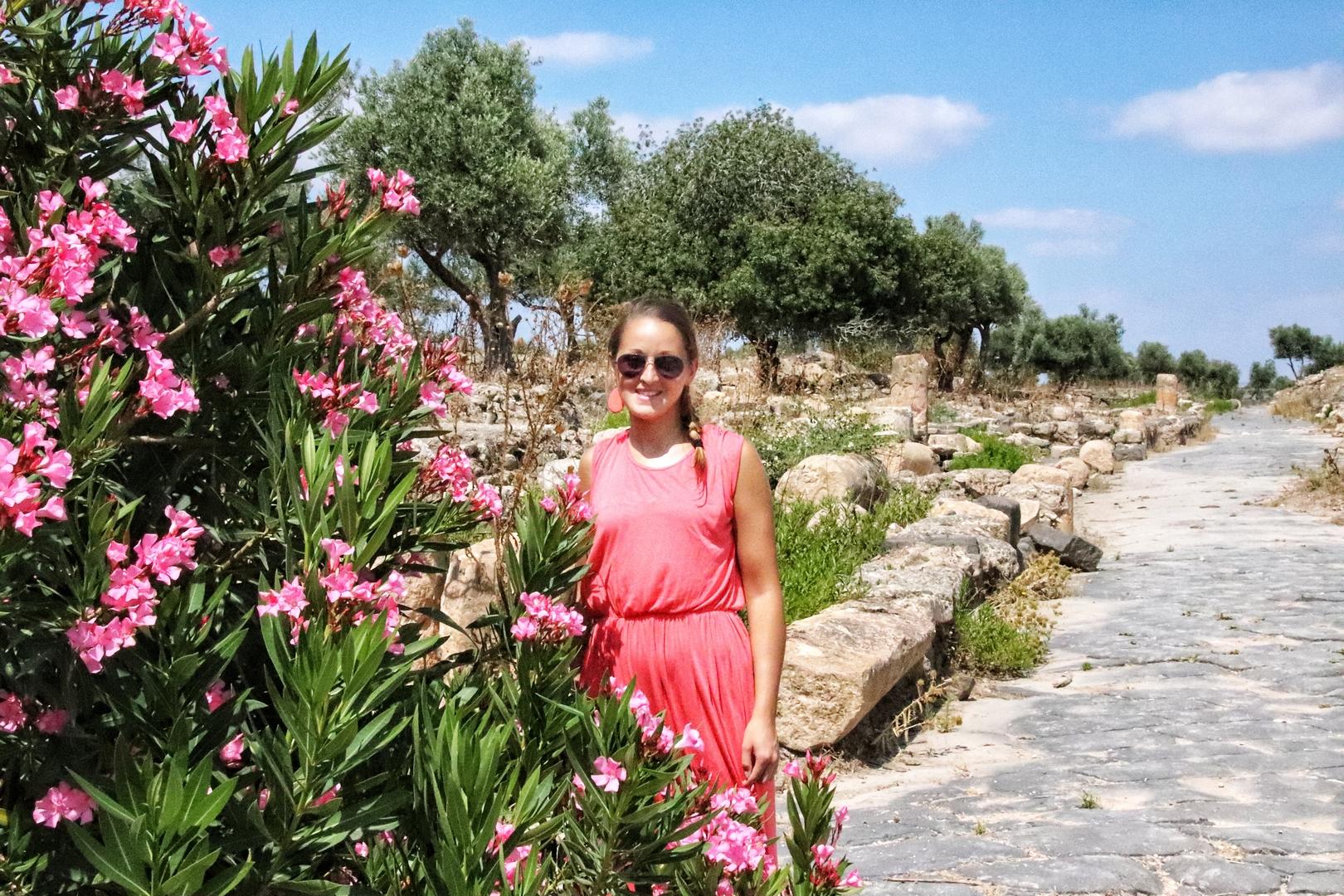 Jordanie - Laurier rose sur le site romain de Umm Qais