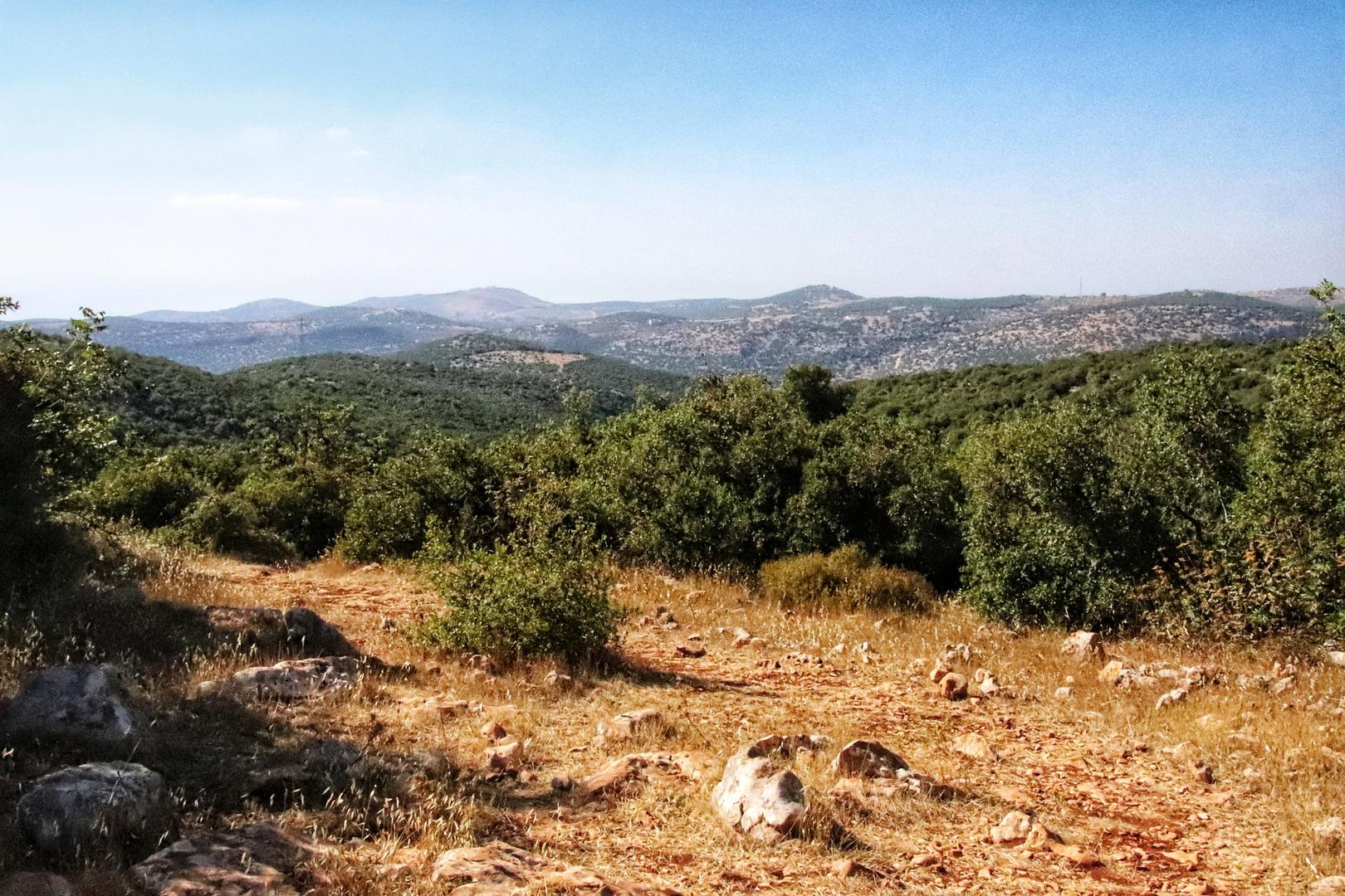 Jordanie - Randonnée dans la réserve d'Ajlun