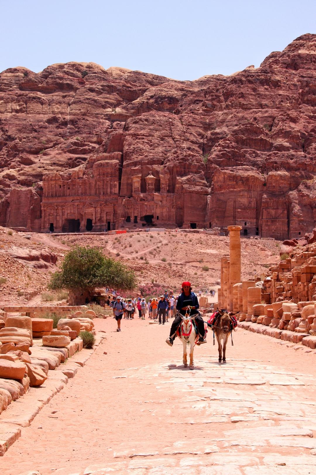Jordanie - Bédouin et ses ânes dans la rue des colonnades à Petra