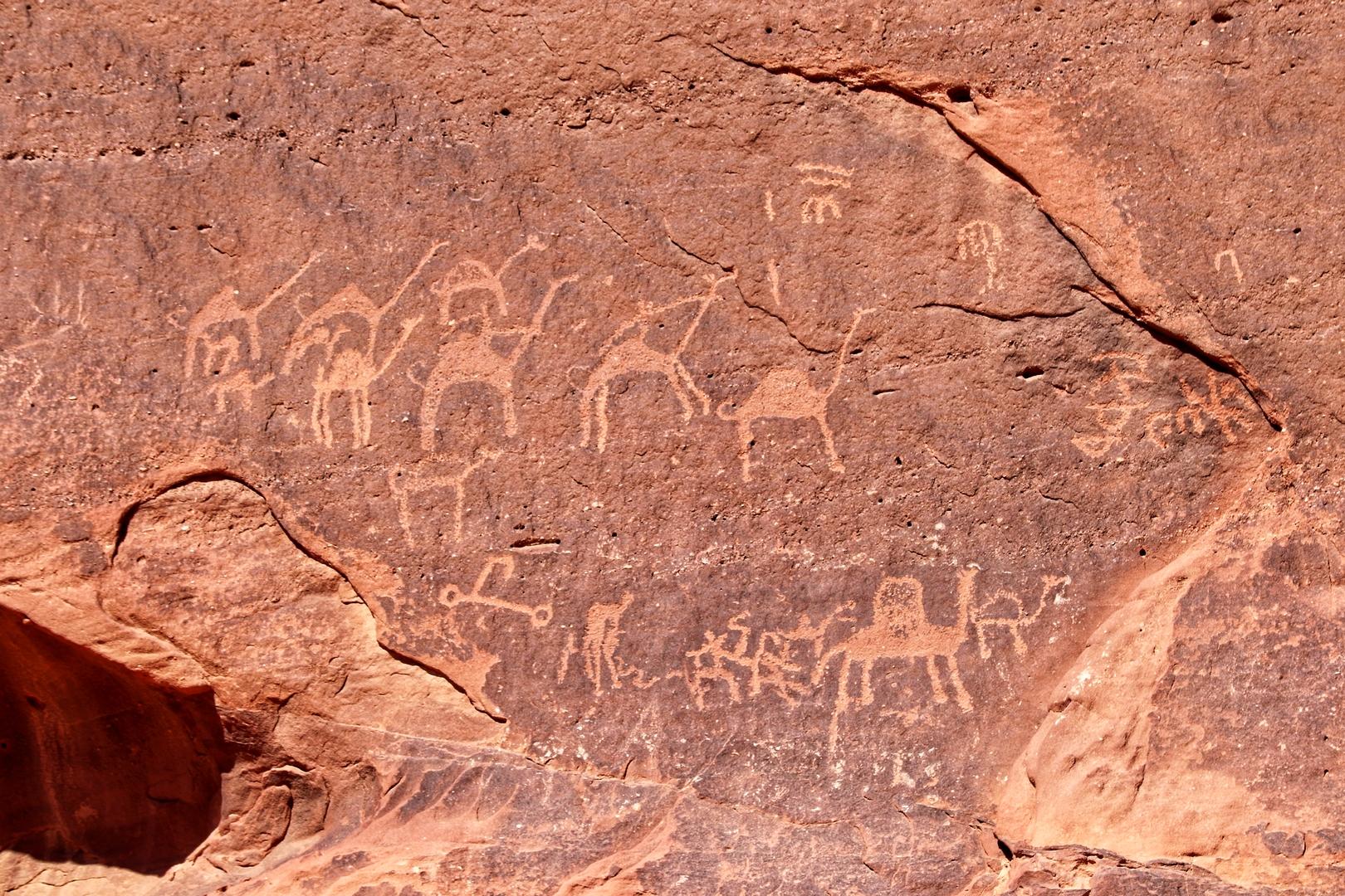 Jordanie - Gravures rupestres dans le désert de Wadi Rum