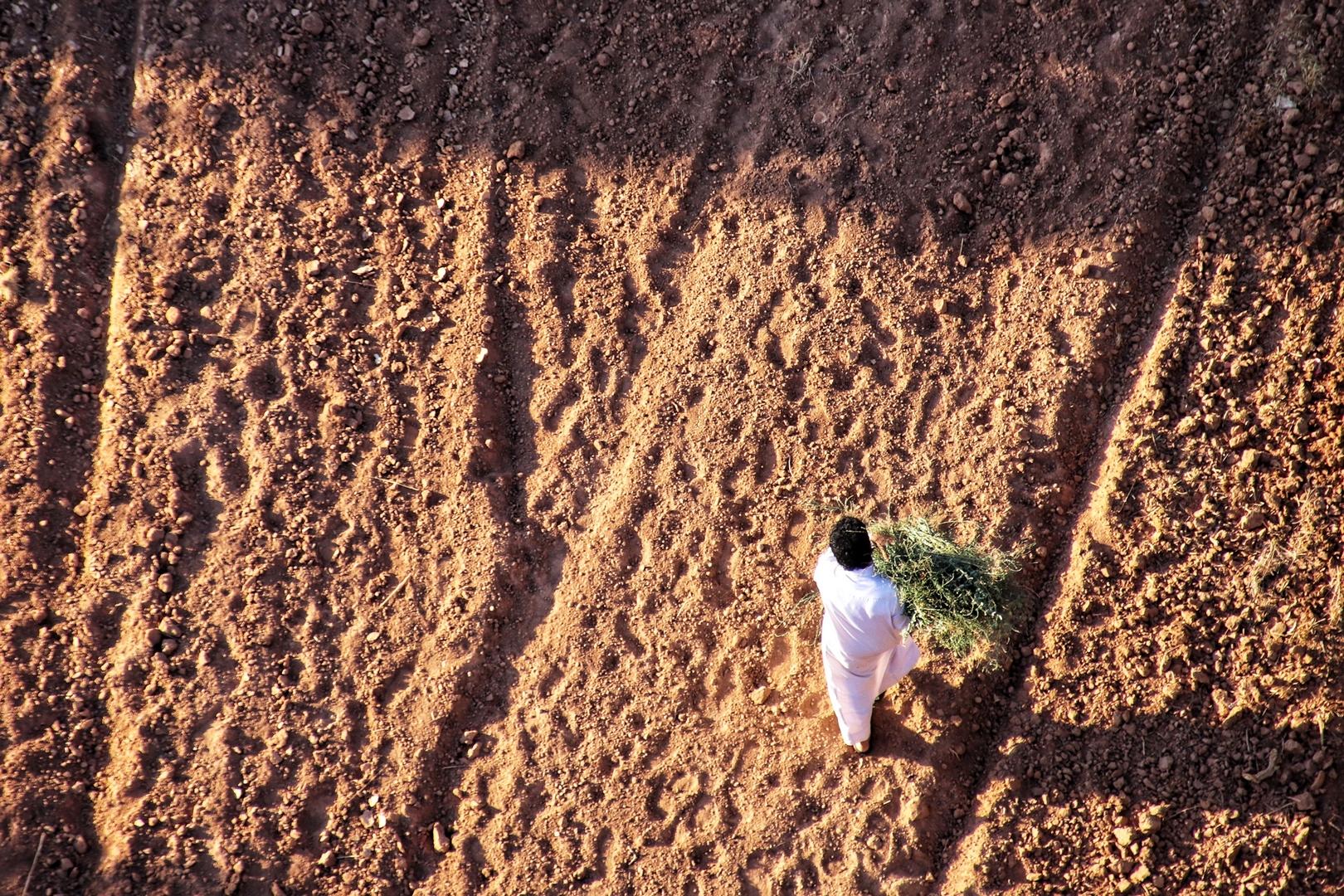 Jordanie - Bédouin cultivateur vu du ciel dans le désert de Wadi Rum