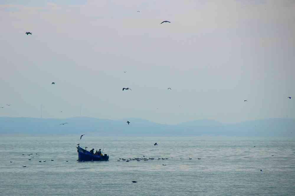 Maroc - Bateau de pêche au large d'Essaouira
