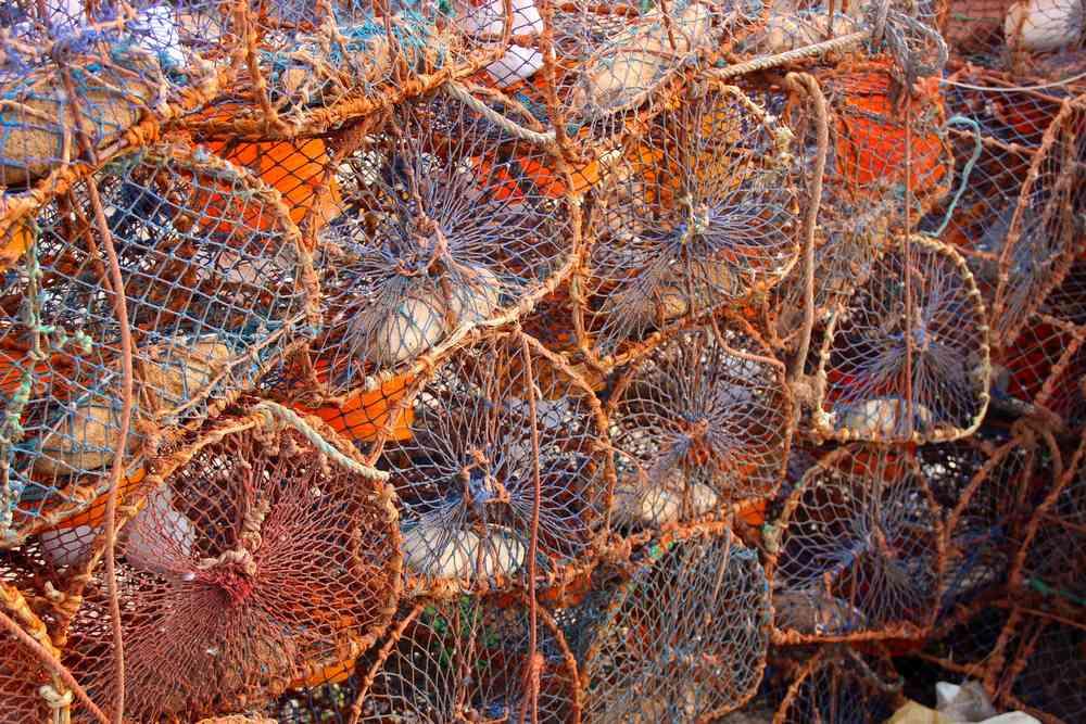 Maroc - Filets de pêche dans le port d'Essaouira