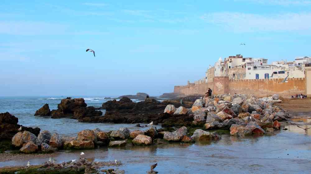 Maroc - La médina d'Essaouira, sur les rochers