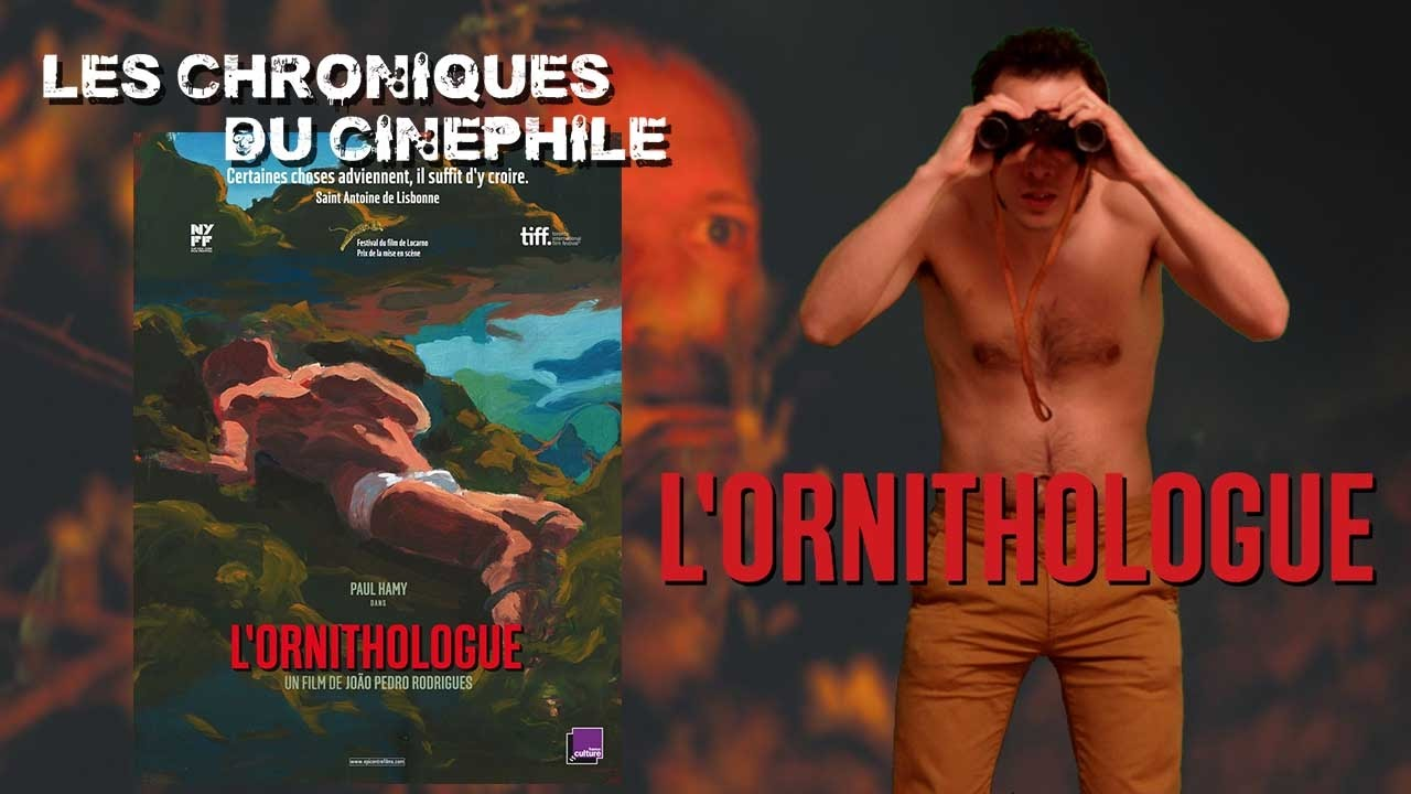 Portugal - Film - L'ornithologue