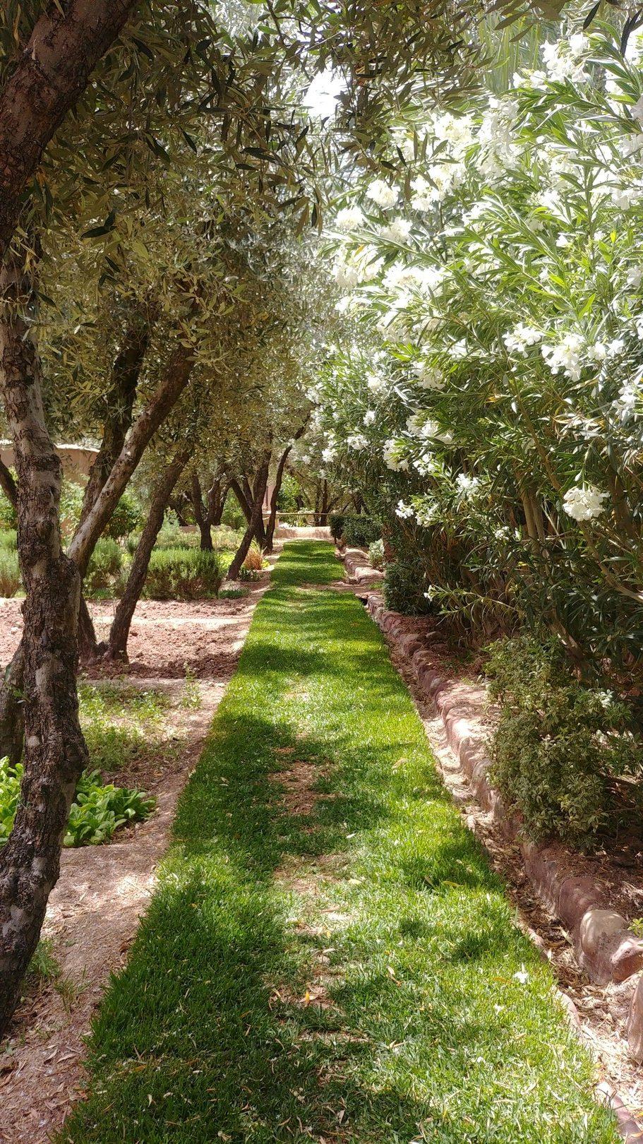 Maroc - Le jardin du Dar Ahlam
