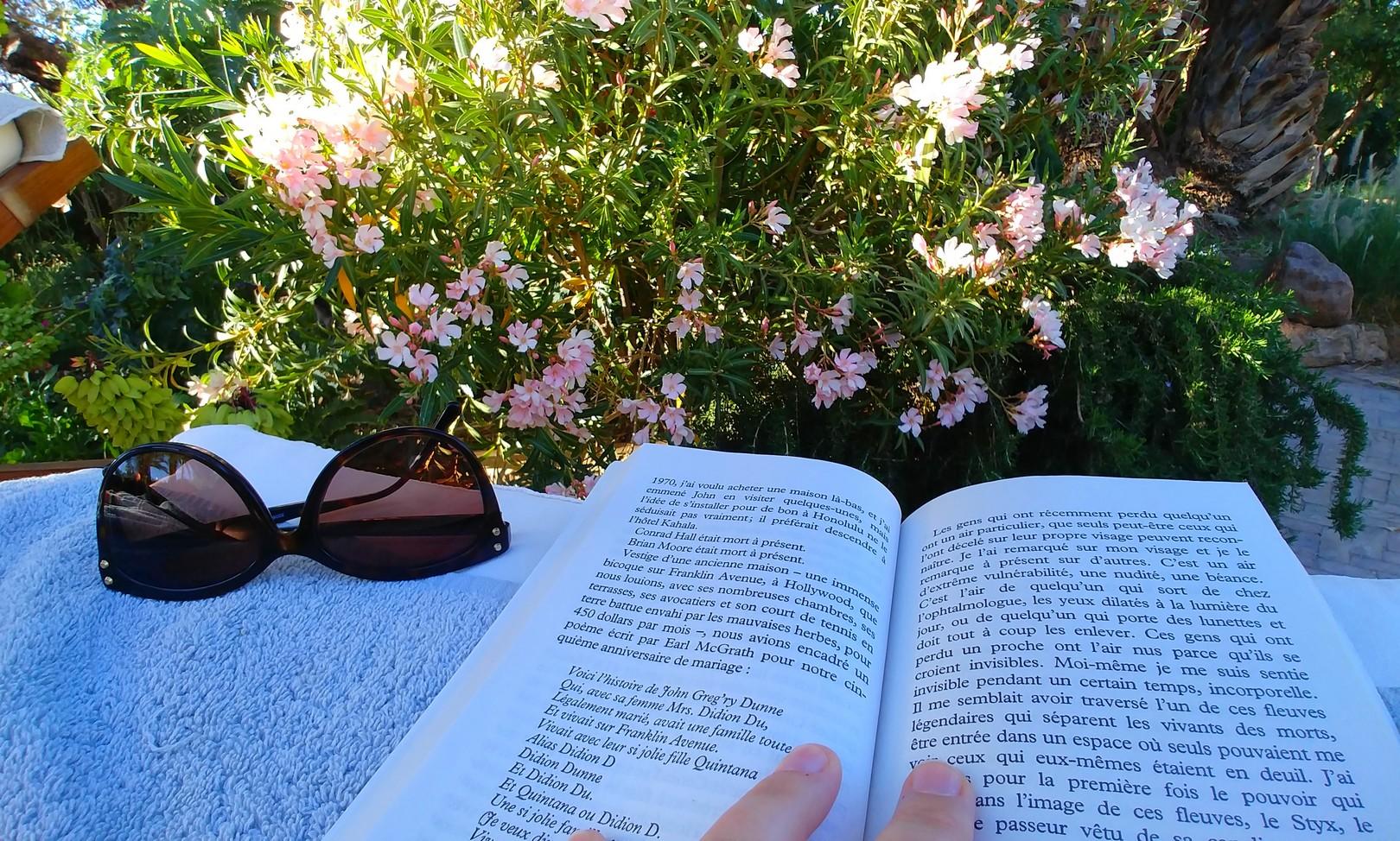 Maroc - Pause lecture dans le jardin du Dar Ahlam
