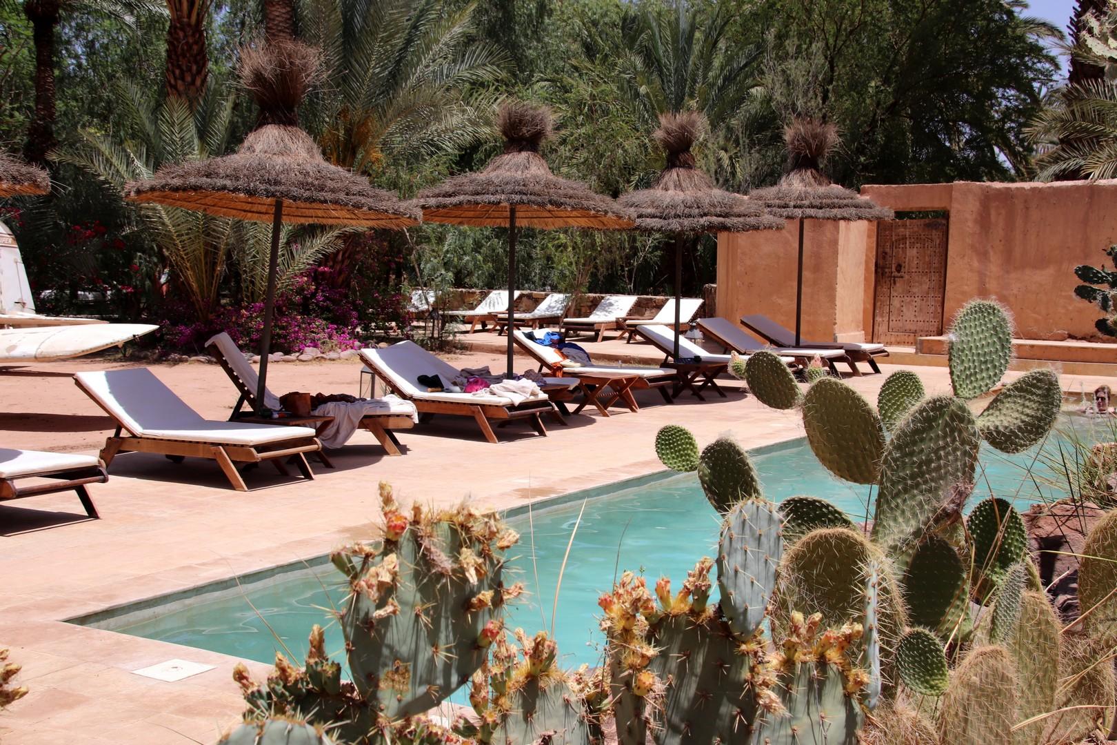 Maroc - Piscine et transats à l'Azalai Desert Lodge à Zagora