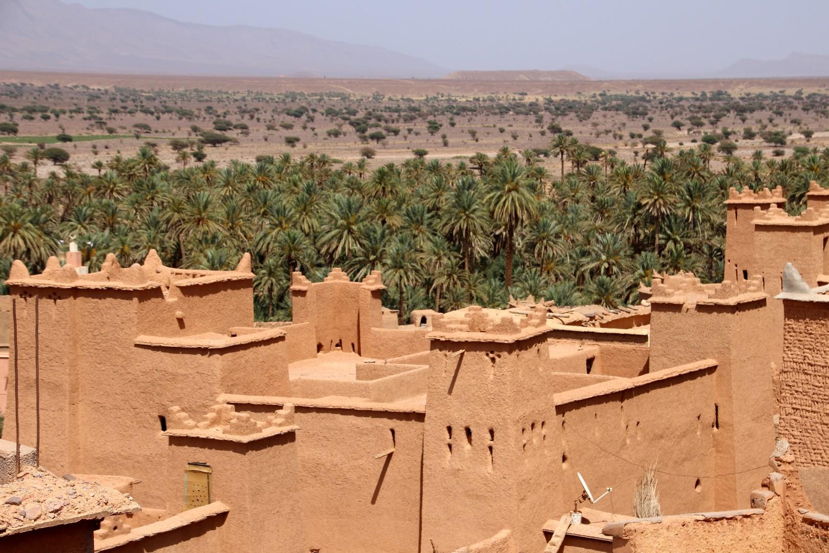 Maroc - Kasbah et palmeraie dans la vallée du Drâa