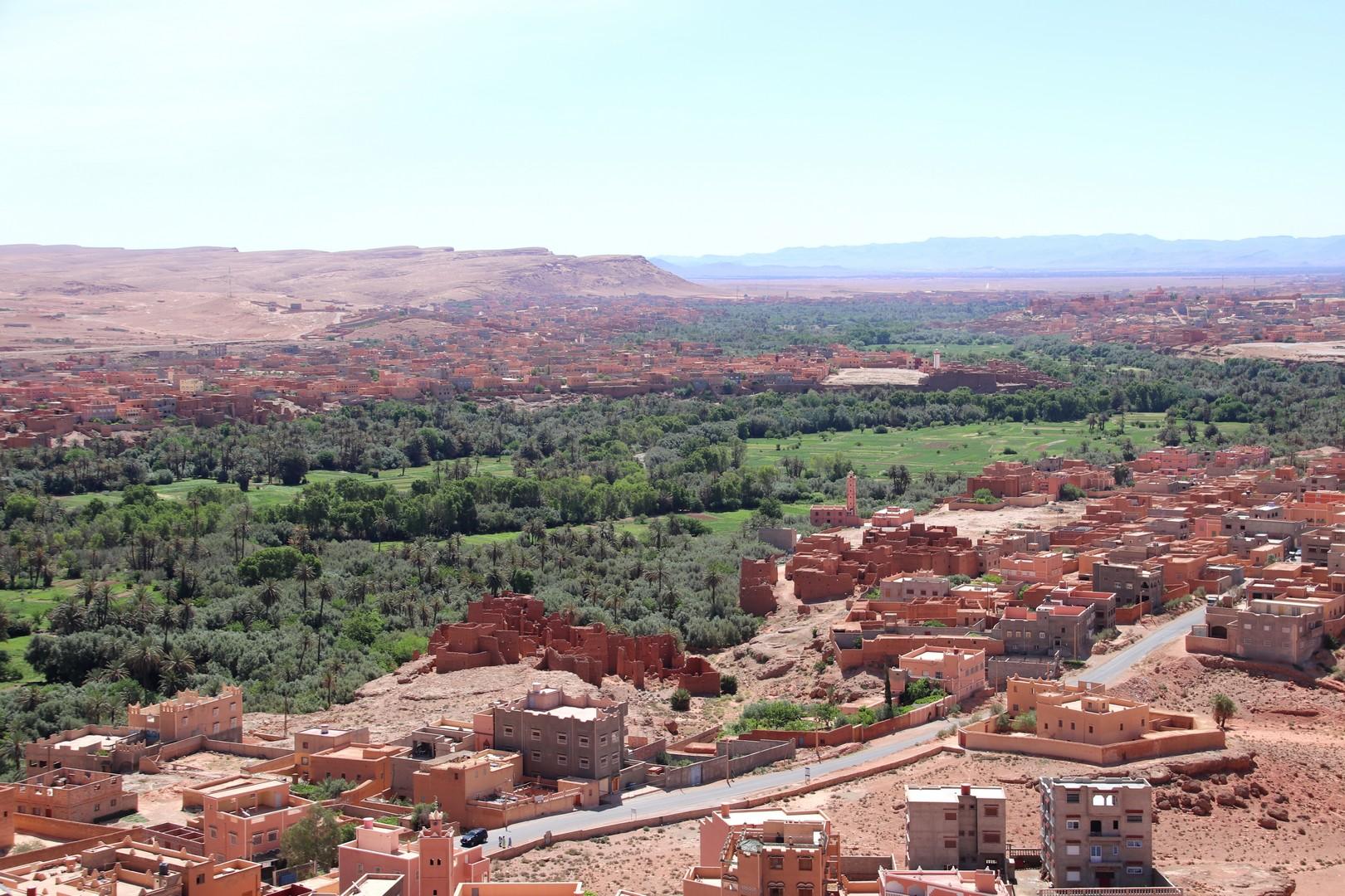 Maroc - Palmeraie de Tineghir