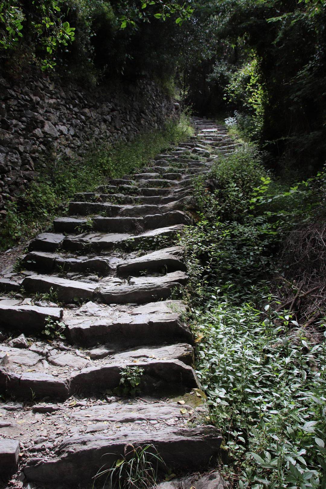 Italie - Sentier de randonnée entre Vernazza et Corniglia, parc des cinque terre