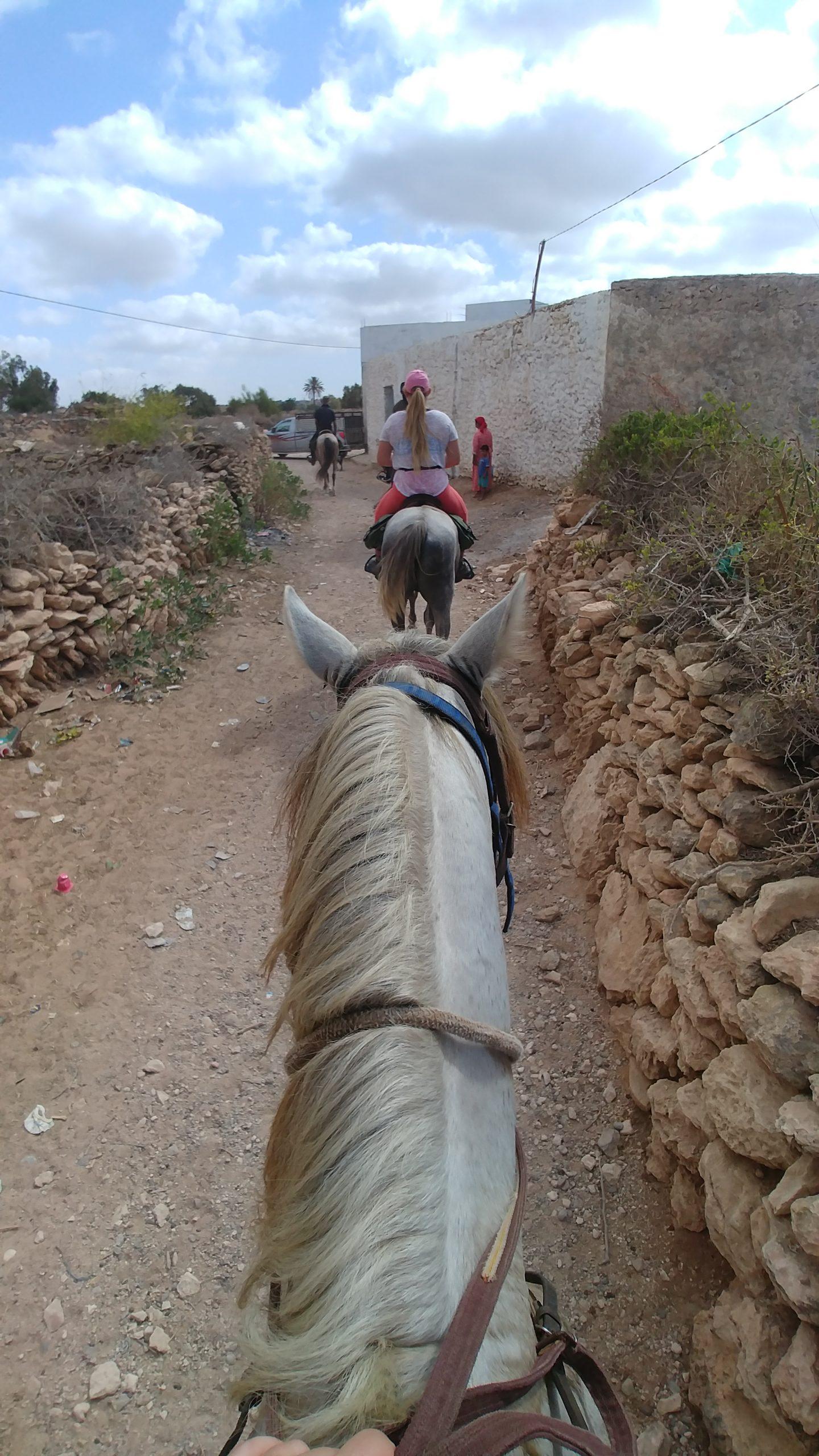 Maroc - Randonnée à cheval à Essaouira et Sidi Kaouki