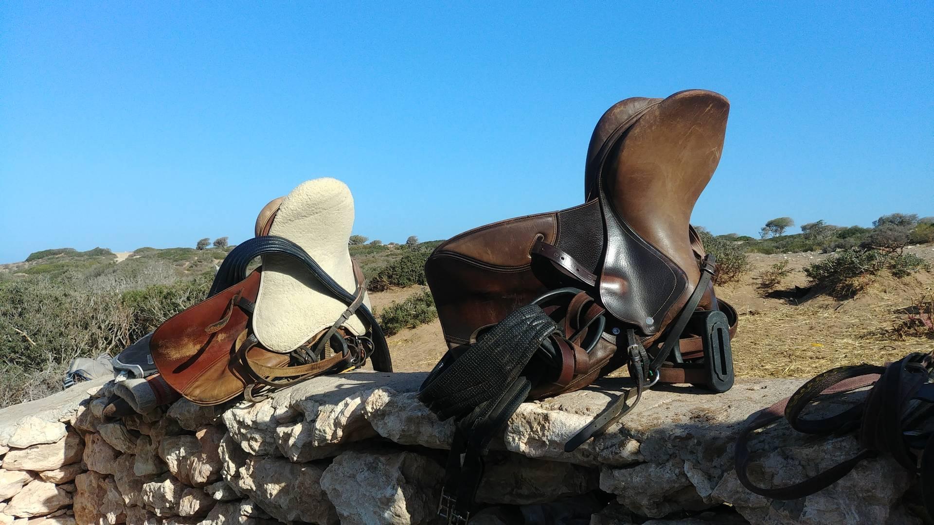 Maroc - Départ en randonnée à cheval