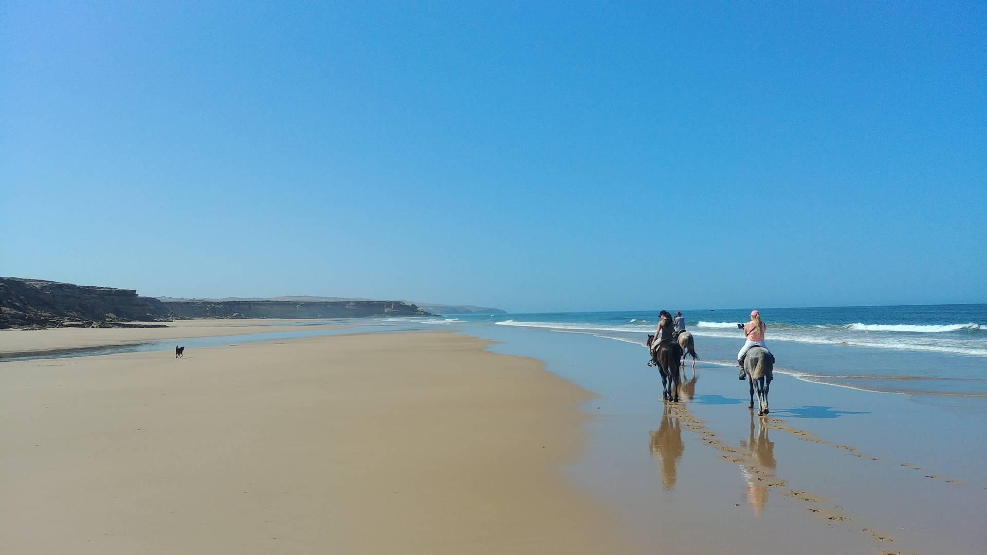 Maroc - Balade à cheval sur la plage à Essaouira