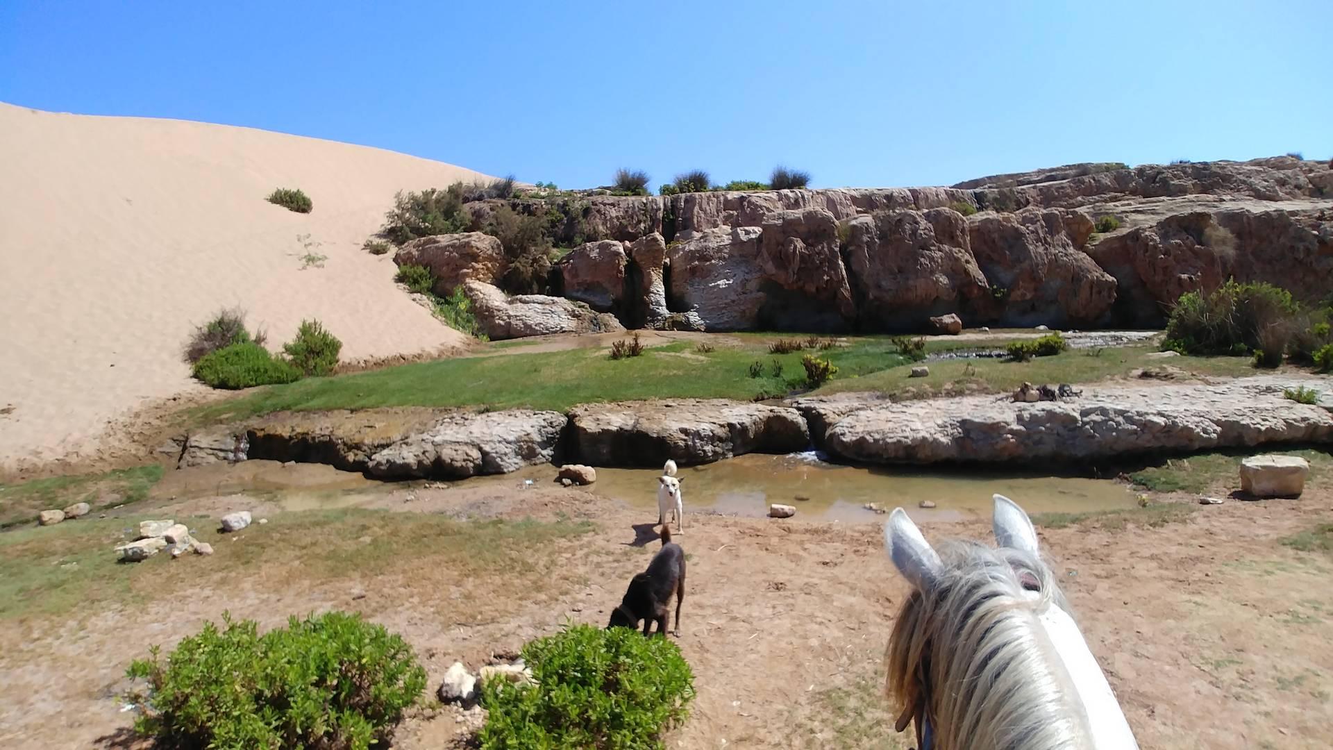 Maroc - Cascades de Sidi Mbarek à Essaouira à cheval