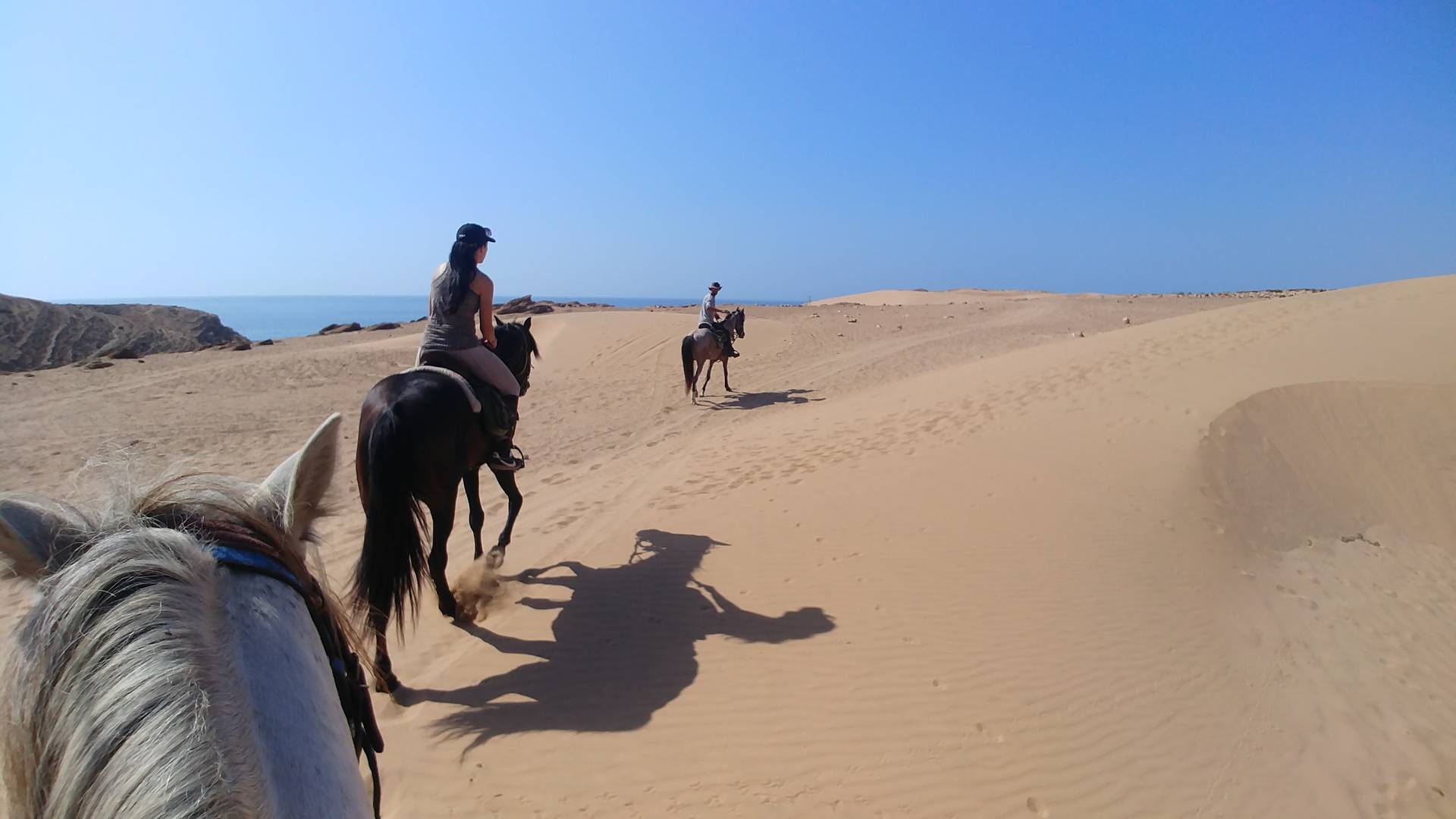 Maroc - Dunes, randonnée à cheval à Essaouira