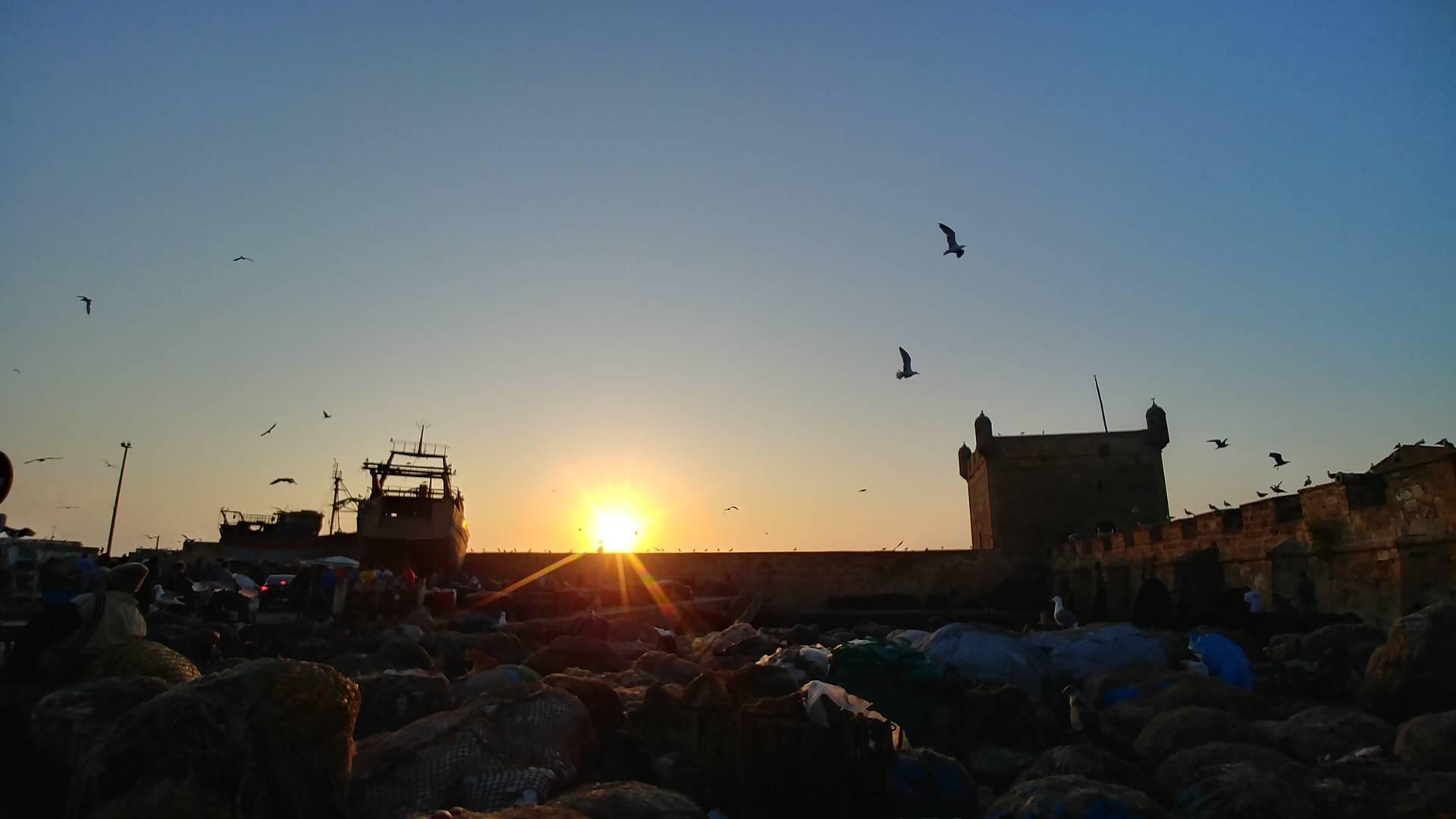 Maroc - Coucher de soleil sur le port d'Essaouira
