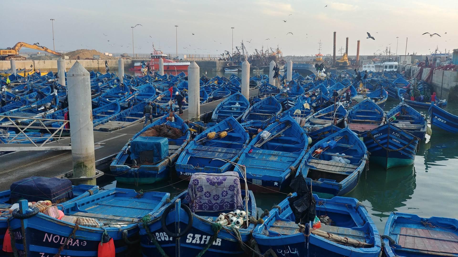 Maroc - Bateaux de pêche dans le port d'Essaouira