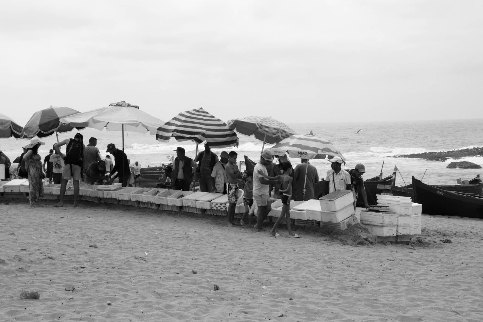 Maroc - Vendeurs de poissons sur la plage de Oualidia