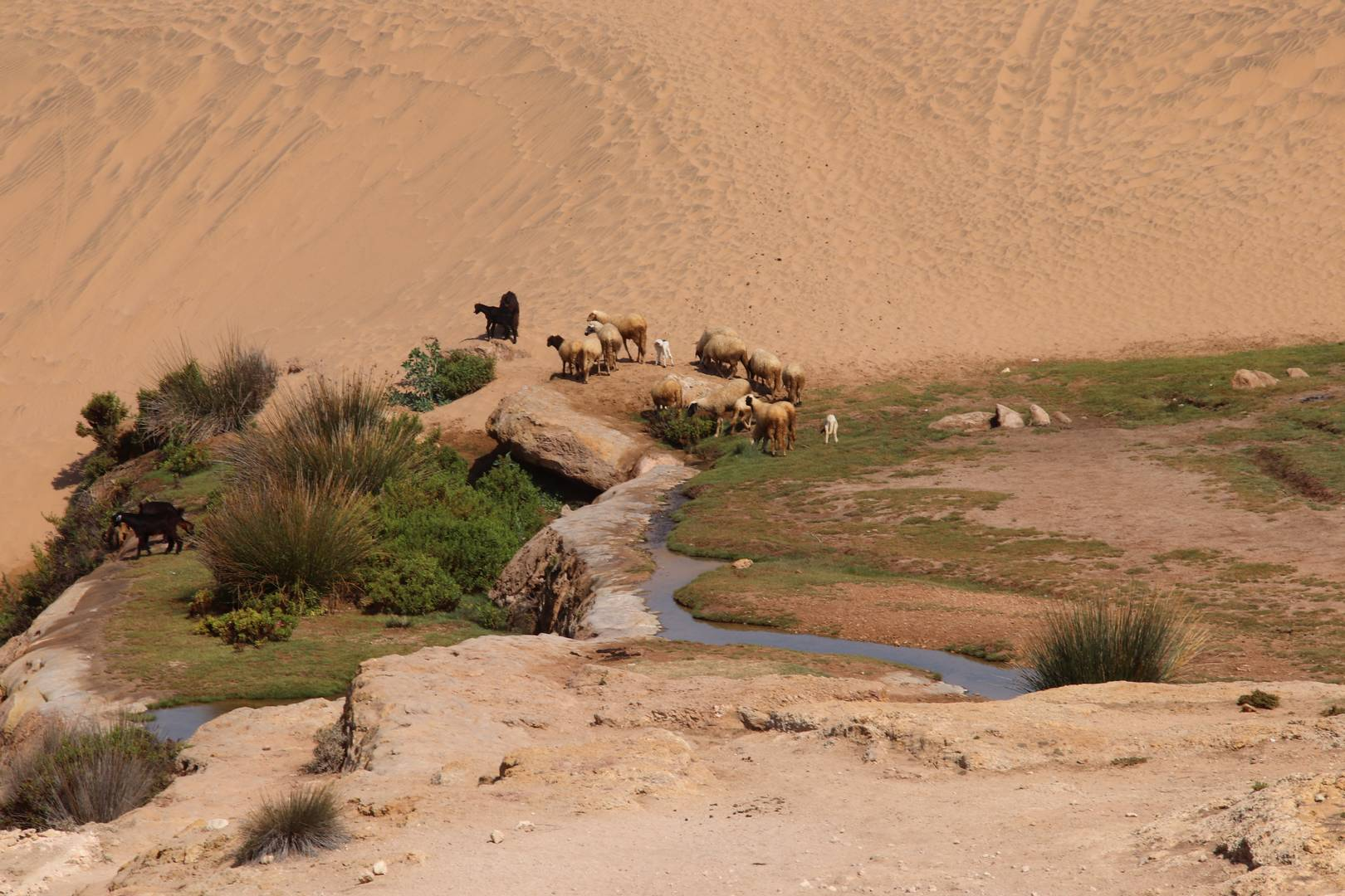 Maroc - Cascades de Sidi M'barek au Sud d'Essaouira